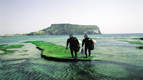 韩国济州岛4日团队游(3钻)·纯玩半自助游 2天自由活动
